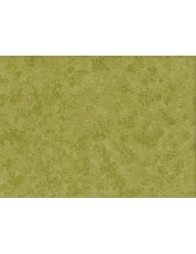 Tissu coton Spraytime Vert