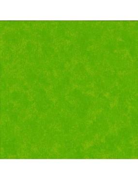 Tissu coton Spraytime Citron Vert