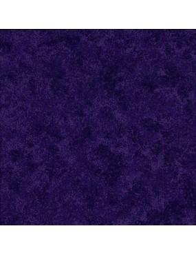 Tissu coton Spraytime Raisin