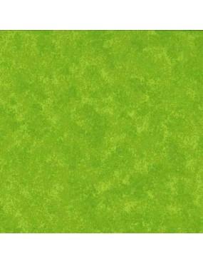 Tissu coton Spraytime Vert...
